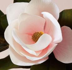 02-Lou-de-Castellane-Artificielles-Artificial-Artificiale-Fleurs-Flowers-Fiore-Flor