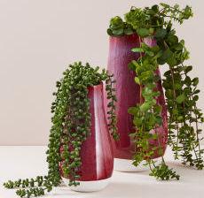 04-Lou-de-Castellane-Artificielles-Artificial-Artificiale-Fleurs-Flowers-Fiore-Flor