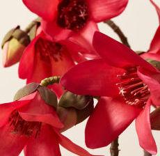 09-Lou-de-Castellane-Artificielles-Artificial-Artificiale-Fleurs-Flowers-Fiore-Flor