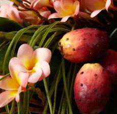 10-Lou-de-Castellane-Artificielles-Artificial-Artificiale-Fleurs-Flowers-Fiore-Flor