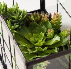 12-Lou-de-Castellane-Artificielles-Artificial-Artificiale-Fleurs-Flowers-Fiore-Flor