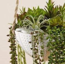 15-Lou-de-Castellane-Artificielles-Artificial-Artificiale-Fleurs-Flowers-Fiore-Flor