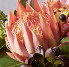 1_19-Lou-de-Castellane-Artificielles-Artificial-Artificiale-Fleurs-Flowers-Fiore-Flor-PROTEA