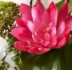 20-Lou-de-Castellane-Artificielles-Artificial-Artificiale-Fleurs-Flowers-Fiore-Flor