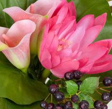 31-Lou-de-Castellane-Artificielles-Artificial-Artificiale-Fleurs-Flowers-Fiore-Flor