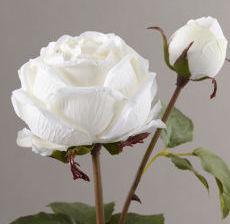 Lou-de-Castellane-Artificielles-Artificial-Artificiale-Fleurs-Flowers-Fiore-Flor