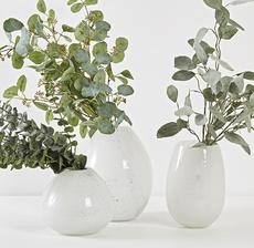 eucalyptus vase