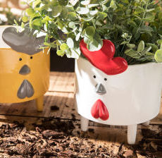 Amadeus-Decoration-Cache-pot-maceta-portavasi-planter-poule-hen-Tradition-tradicion-tradizione