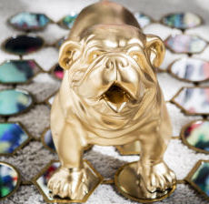 Korb-Modern-design-Tendencia-Tendenza-Bulldog-dore-gold-fun-gallery