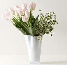 vase tulip