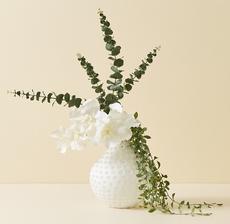 vase vanda blanche